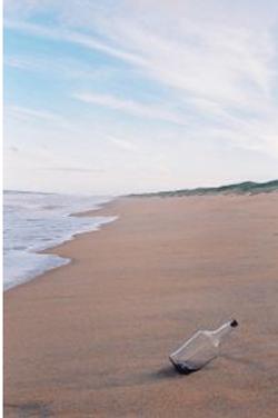 Botella vacía en la playa